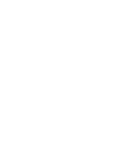 WIRED silver seal